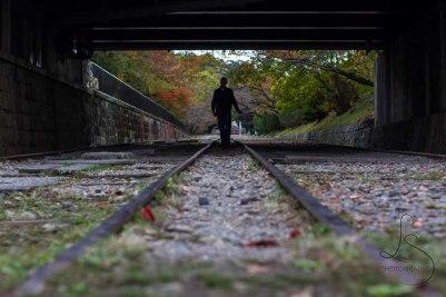 Kyoto tracks